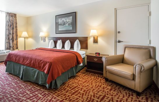 Suite Quality Inn At Town Center
