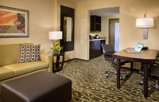 Suite Embassy Suites by Hilton Houston Energy Corridor