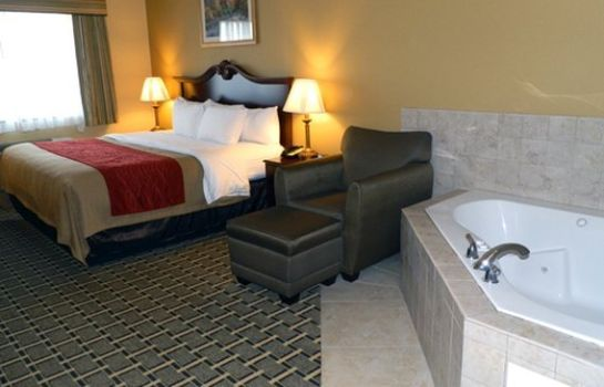 Suite Holiday Inn Express & Suites OLATHE SOUTH
