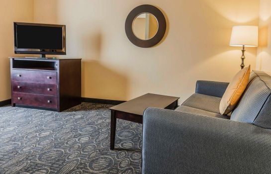Suite Comfort Suites Pell City