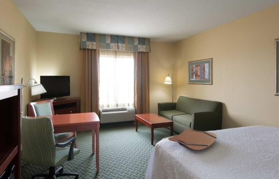 Zimmer Hampton Inn - Suites El Paso West