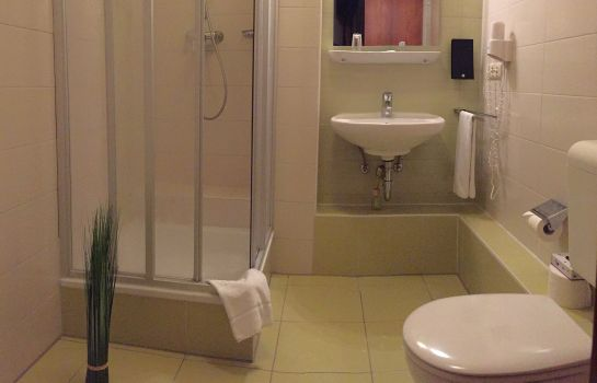 Bathroom Parkhotel Zirndorf