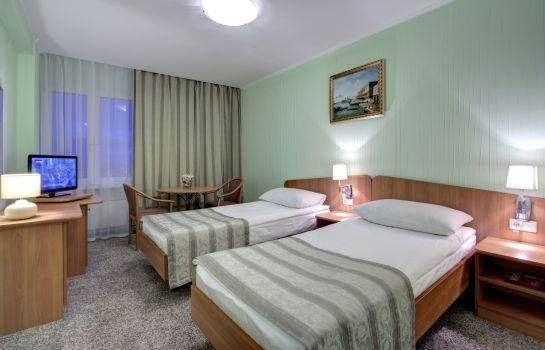 Single room (standard) Izmailovo Alpha Hotel