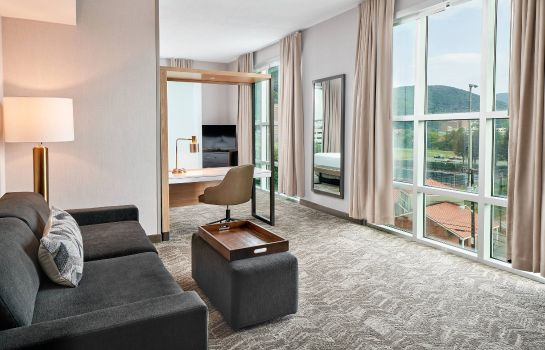 Suite SpringHill Suites Roanoke