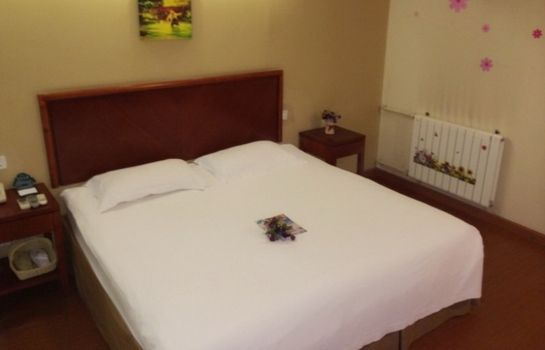 Single room (superior) Green Tree Inn Nanjing Road(Domestic guest only) Domestic only