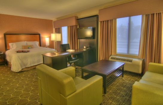 Suite Hampton Inn and Suites Parsippany-North