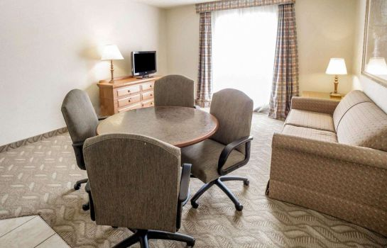Suite Comfort Inn Downtown