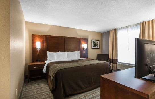 Suite Comfort Inn Bay City - Riverfront