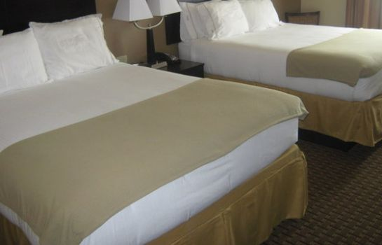 Zimmer Holiday Inn Express & Suites DEL RIO