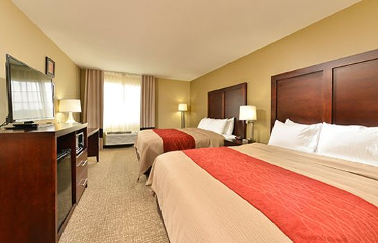 Room Comfort Inn and Suites Manheim - Lebanon