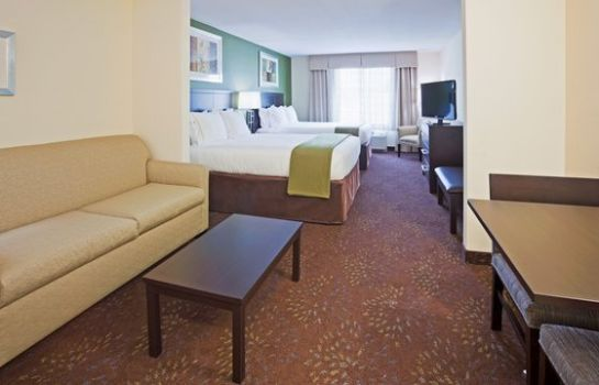 Suite Holiday Inn Express & Suites ROCHESTER – MAYO CLINIC AREA