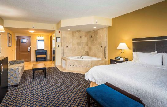 Suite Hampton Inn - Suites Jacksonville South - Bartram Park