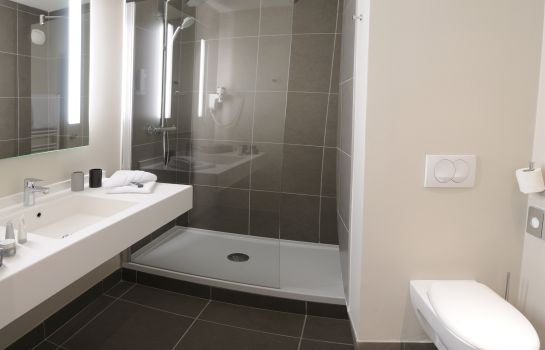 Double room (standard) Best Western Plus Lyon - Chassieu