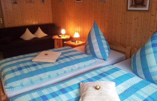 Double room (standard) Boarding House