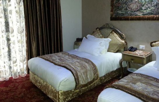 Double room (standard) Q- Hotel
