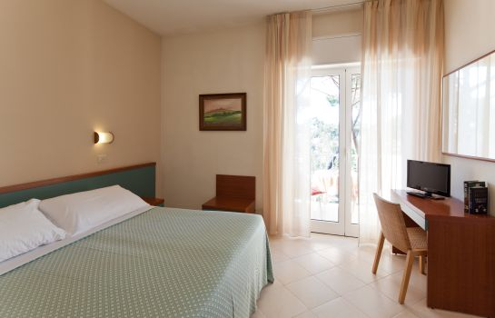 Double room (standard) Hotel Andreaneri