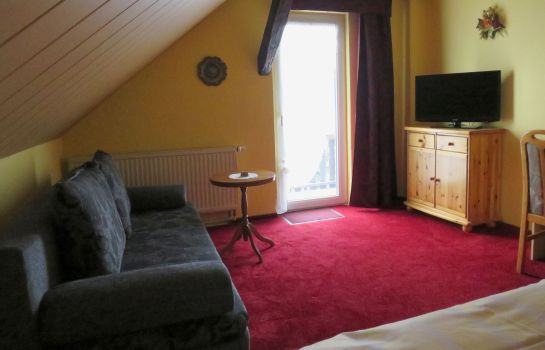 Double room (standard) Zum Wiesengrund Pension