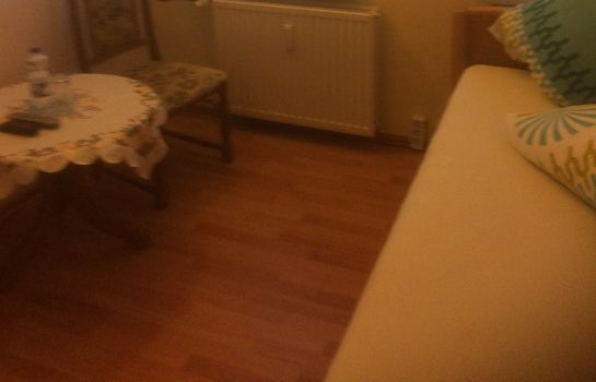 Single room (standard) Am Flugplatz Magdeburg