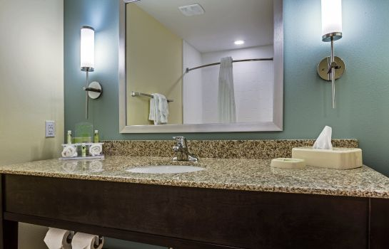 Zimmer Holiday Inn Express & Suites ORLANDO EAST-UCF AREA