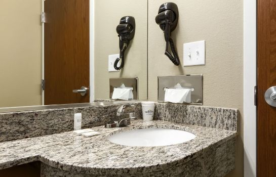 Bagno in camera Microtel Inn & Suites by Wyndham Shelbyville