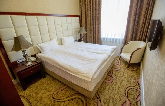 Double room (standard) Akyan Saint-Petersburg