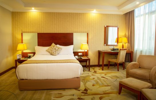 Single room (standard) Jupiter International Hotel Bole