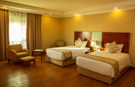 Double room (standard) Jupiter International Hotel Bole