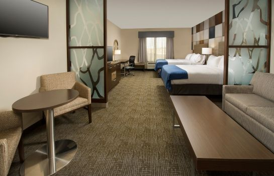 Suite Holiday Inn Express & Suites WACO SOUTH