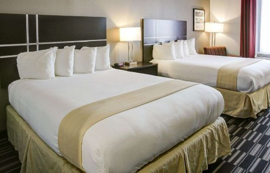 Chambre Quality Inn & Suites Bryan