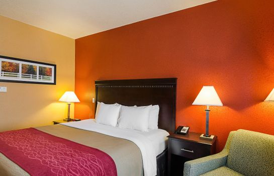 Chambre Comfort Inn & Suites Orange - Montpelier