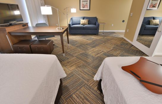 Suite Hampton Inn - Suites Chippewa Falls
