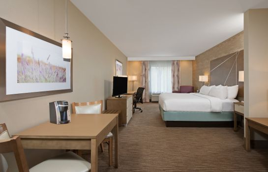 Suite Holiday Inn Express & Suites HARRISBURG S - NEW CUMBERLAND