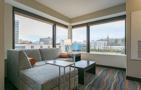 Suite Holiday Inn & Suites CHATTANOOGA DOWNTOWN