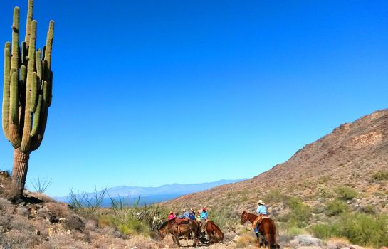 Umgebung Stagecoach Trails Guest Ranch
