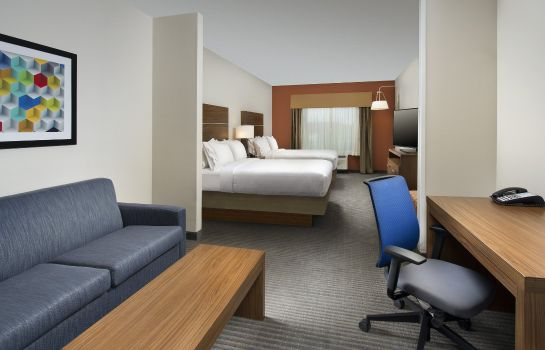 Suite Holiday Inn Express & Suites BAY CITY