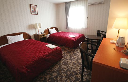 Double room (standard) Hotel New Gaea Iizuka