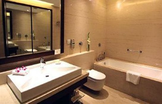 Badkamer The Hotel Hindusthan International