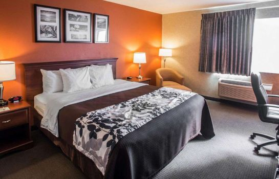 Zimmer Sleep Inn & Suites