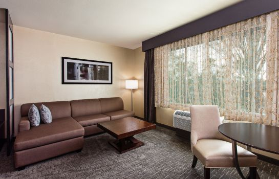 Info Holiday Inn Express & Suites ANAHEIM RESORT AREA