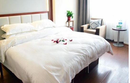 Camera singola (Standard) Green Tree Inn Fuyang Railway Station Business Hotel (Domestic only)