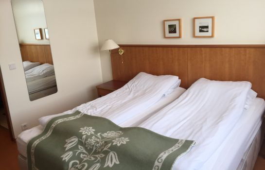 Double room (standard) Welcome Hotel Hellisandur