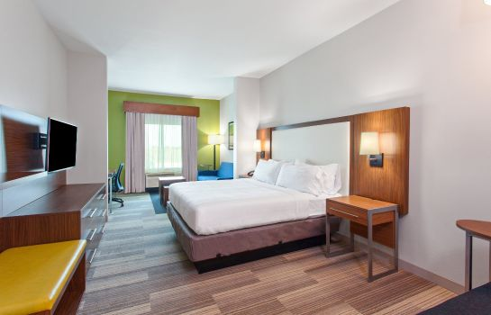 Suite Holiday Inn Express & Suites HOUSTON S - MEDICAL CTR AREA