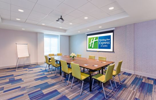 Sala de reuniones Holiday Inn Express & Suites HOUSTON S - MEDICAL CTR AREA