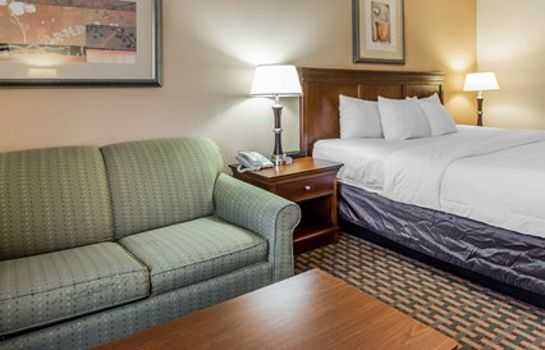 Suite Quality Inn & Suites Dawsonville
