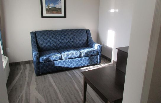Suite BEST WESTERN PLUS DENVER CITY