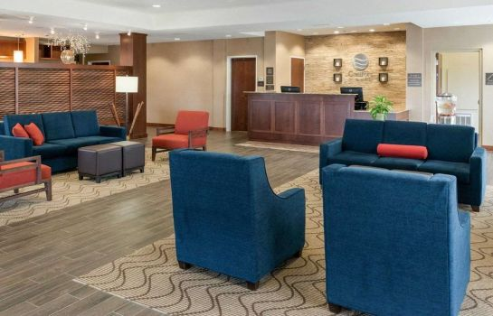 Hol hotelowy Comfort Inn & Suites West - Medical Center