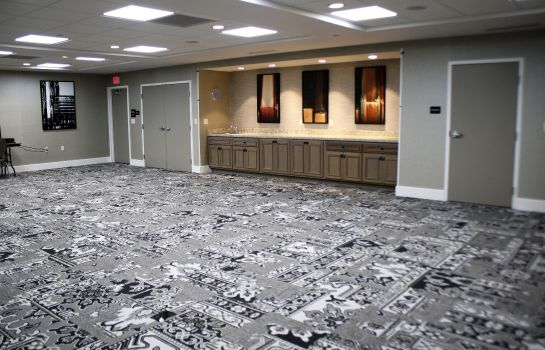 Congresruimte Hampton Inn - Suites-Alliance OH