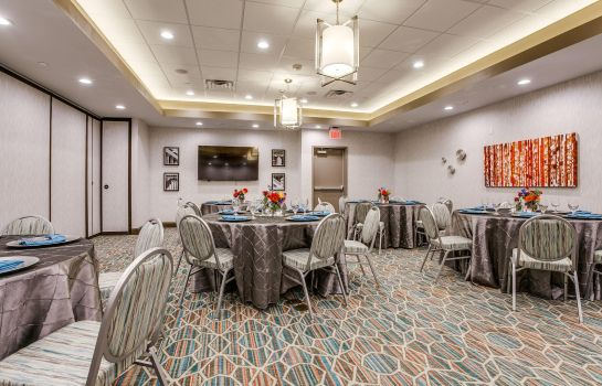 Sala konferencyjna Hampton Inn - Suites Dallas-Central Expy-North Park Area TX