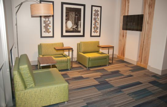 Hotelhalle Holiday Inn Express & Suites DECATUR