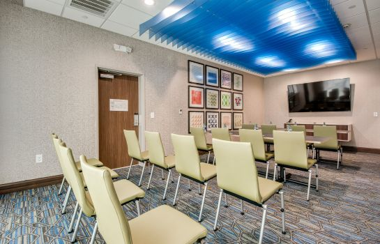 Conference room Holiday Inn Express & Suites DALLAS NORTH - ADDISON